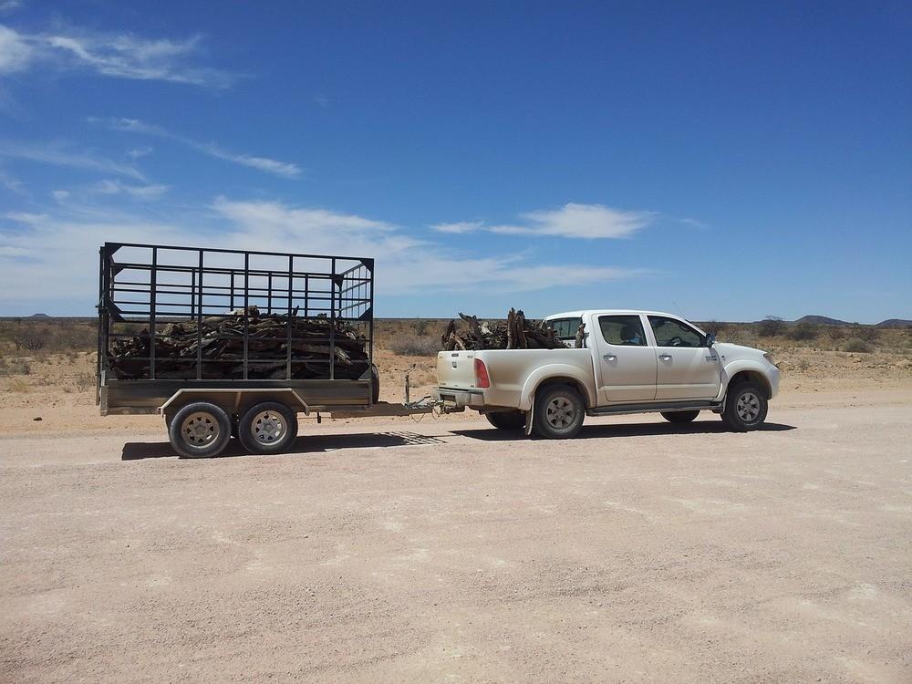 Förflyttning med biltrailers